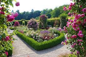 Öröm a szép kert